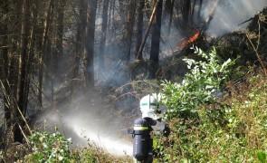 Waldbrand in Jenbach